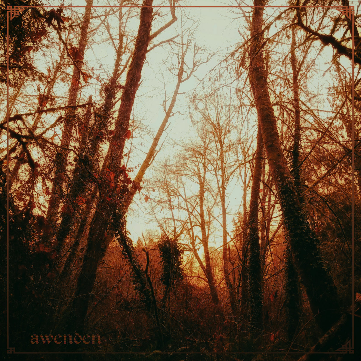 awenden - golden hour